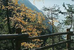 Foto: Wolfgang Dröthandl / Wander Tour / Sonnengesangsweg - Reintalwasserfälle / Aufstieg vom obersten Wasserfall zur Tobelkapelle / 26.01.2011 13:30:06