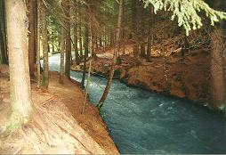 Foto: Wolfgang Dröthandl / Wander Tour / Sonnengesangsweg - Reintalwasserfälle / Wildbach oberhalb des obersten Wasserfalls, Herbst 2006 (Herbst 2011: Bäume abgeholzt!) / 26.01.2011 13:31:19