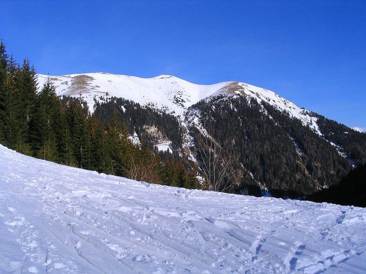Foto: Andreas Koller / Ski Tour / Aus dem Scharnitzgraben auf den Großhansl (2315m) / 24.12.2008 01:06:42