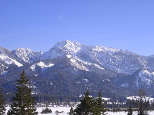 Foto: isi / Ski Tour / Tegelberg / Tegelberg von Norden, auf dieser Seite erfolgt auch der Aufstieg / 08.01.2008 11:54:18