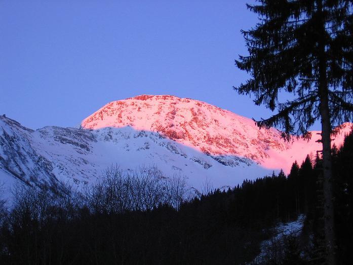 Foto: Andreas Koller / Ski Tour / Hagener Hütte und Greilkopf (2581m) / Der Feldseekopf (2864 m) im ersten Sonnenlicht / 03.01.2008 18:01:56