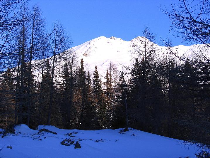 Foto: Andreas Koller / Ski Tour / Hagener Hütte und Greilkopf (2581m) / 24.12.2008 01:35:28