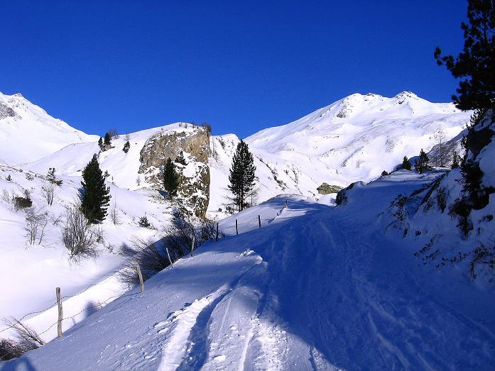 Foto: Andreas Koller / Ski Tour / Hagener Hütte und Greilkopf (2581m) / Die Spur zieht nach N direkt auf den Greilkopf zu / 03.01.2008 17:59:09