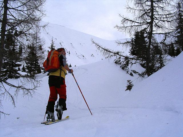 Foto: Andreas Koller / Ski Tour / Zwei Gipfel aus dem Gullinggraben (2196 m) / Der Wald lichtet sich / 21.01.2008 15:50:48