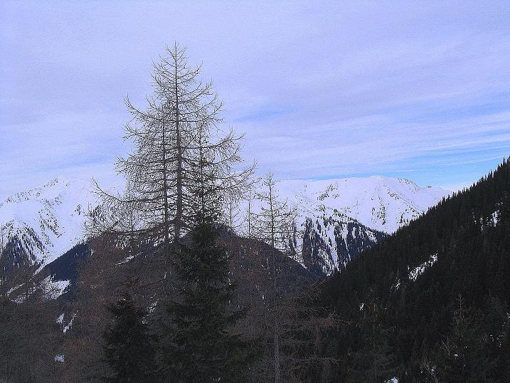 Foto: Andreas Koller / Ski Tour / Zwei Gipfel aus dem Gullinggraben (2196 m) / 24.12.2008 12:57:11
