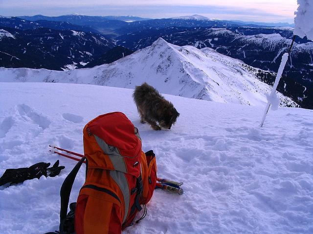 Foto: Andreas Koller / Ski Tour / Zwei Gipfel aus dem Gullinggraben (2196 m) / 24.12.2008 12:56:04
