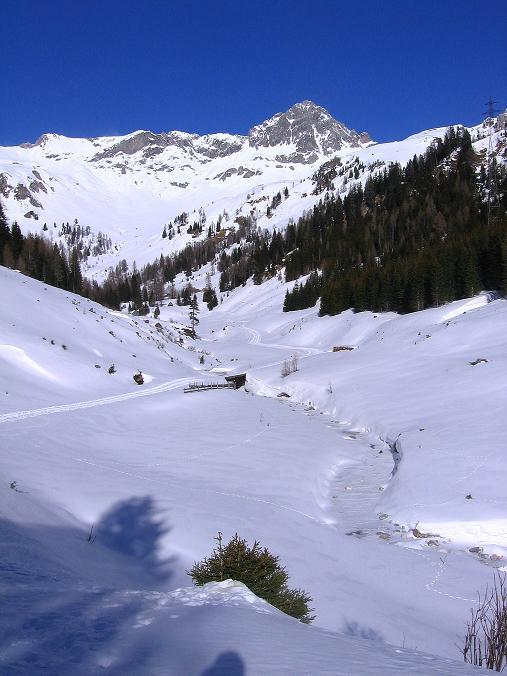 Foto: Andreas Koller / Skitour / Schliererspitze  (2402m) / Über dem Talschluss thront die Permuthwand (2479 m) / 29.01.2008 01:47:53