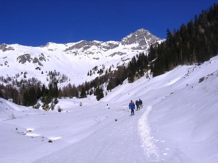 Foto: Andreas Koller / Skitour / Schliererspitze  (2402m) / Entlang des Großen Kessel Baches zur Muhrer Alm / 29.01.2008 01:47:07