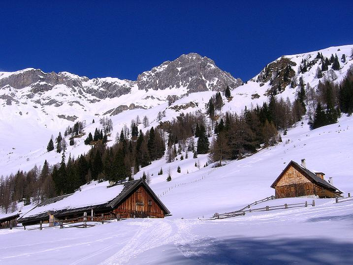 Foto: Andreas Koller / Skitour / Schliererspitze  (2402m) / Muhrer Alm gegen Permuthwand (2479 m) / 29.01.2008 01:46:24