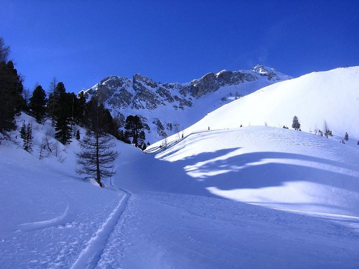 Foto: Andreas Koller / Skitour / Schliererspitze  (2402m) / Oberhalb der Kösslerhias Alm / 29.01.2008 01:45:42