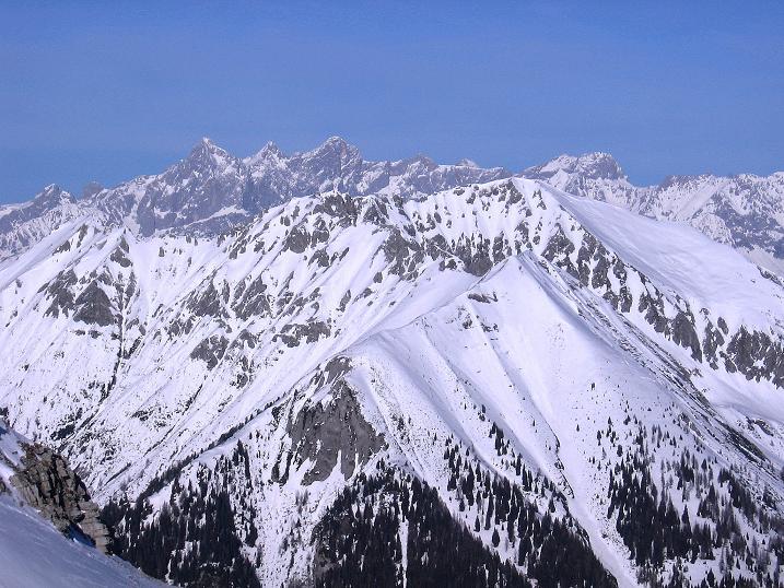 Foto: Andreas Koller / Skitour / Schliererspitze  (2402m) / Der Dachstein (2996 m) grüßt im N / 29.01.2008 01:37:19