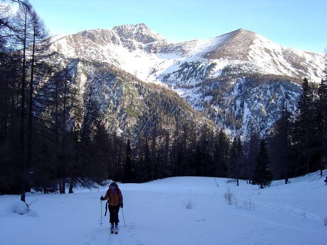 Foto: Manfred Karl / Ski Tour / Über die Schar auf das Viertleck / Auf der flachen Lichtung nach dem Verlassen der Forststraße / 11.02.2008 06:26:37