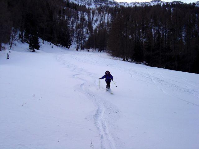 Foto: Manfred Karl / Ski Tour / Über die Schar auf das Viertleck / Abfahrt über die Lichtung oberhalb der Forststraße / 10.02.2008 21:10:32