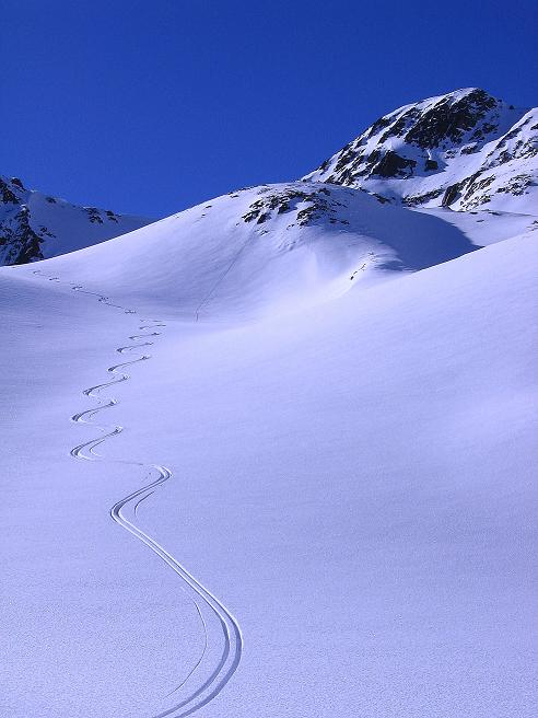 Foto: Andreas Koller / Ski Tour / Kurze Tour auf die Nasse Wand (3046m) / Pulverschnee unterhalb der Nassen Wand / 16.02.2008 13:59:33