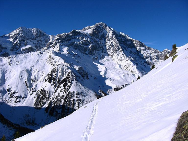 Foto: Andreas Koller / Ski Tour / Durch das Rosimtal auf die Schildspitze (3461m) / Einsame Anstiegsspur und Ortler (3905 m) / 22.02.2008 02:25:51