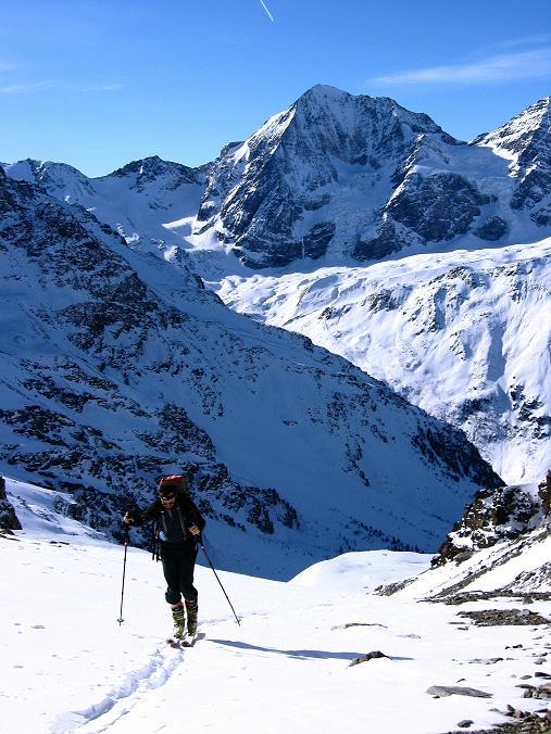 Foto: Andreas Koller / Ski Tour / Durch das Rosimtal auf die Schildspitze (3461m) / Im oberen Rosimtal gegen Königspitze (3859 m)  / 22.02.2008 02:21:52