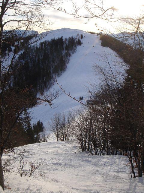 Foto: Manfred Karl / Ski Tour / Faistenauer Schafberg (1559m) / Loibersbacher Höhe / 22.02.2008 16:11:48