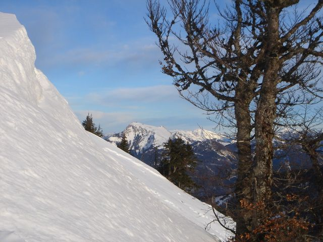 Foto: Manfred Karl / Ski Tour / Faistenauer Schafberg (1559m) / Oft sind hier große Wechten! / 22.02.2008 16:11:28