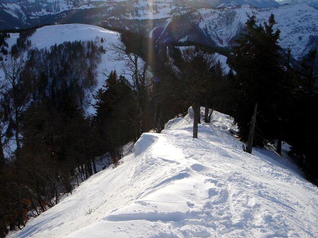 Foto: Manfred Karl / Ski Tour / Faistenauer Schafberg (1559m) / Raus aus dem Wald! / 22.02.2008 16:10:59