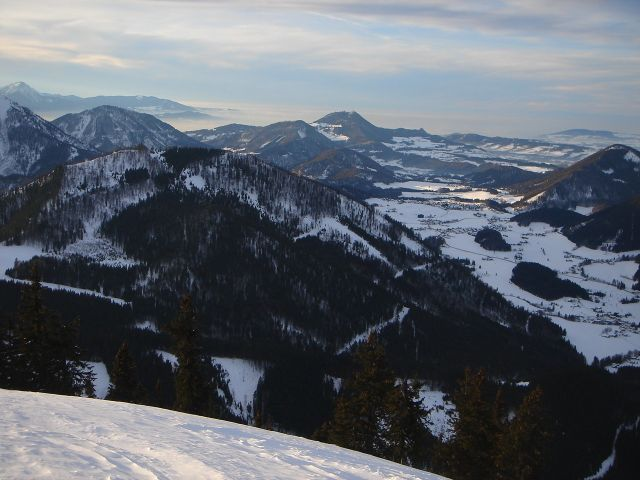 Foto: Manfred Karl / Ski Tour / Faistenauer Schafberg (1559m) / Richtung Gaisberg / 22.02.2008 16:09:07