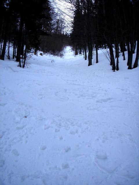 Foto: Manfred Karl / Ski Tour / Faistenauer Schafberg (1559m) / Nordwestrinne / 22.02.2008 16:07:59