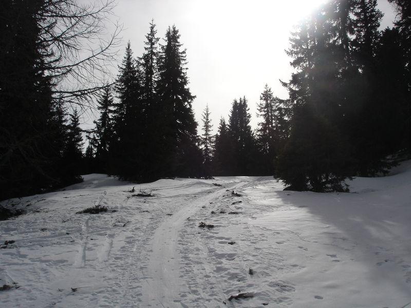 Foto: wickie / Ski Tour / Frauenalpe (1997m) / 24.02.2008 12:42:04