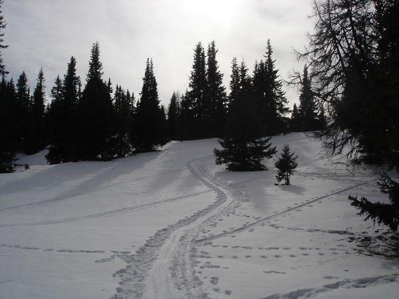 Foto: wickie / Ski Tour / Frauenalpe (1997m) / 24.02.2008 12:42:13