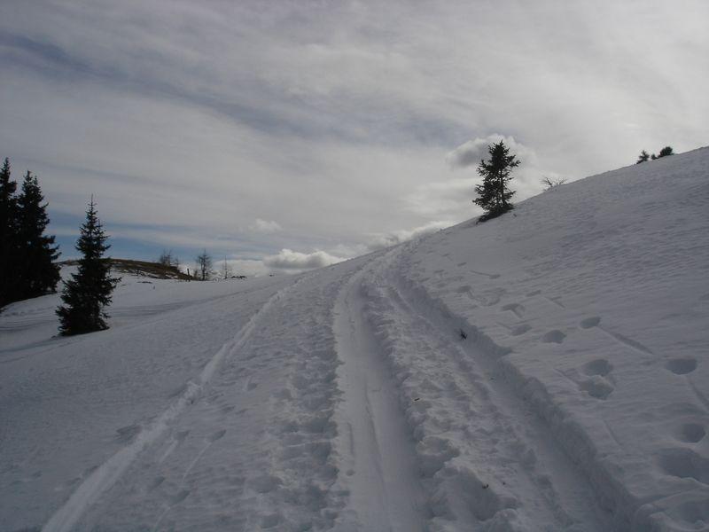 Foto: wickie / Ski Tour / Frauenalpe (1997m) / 24.02.2008 12:42:22