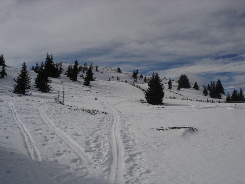 Foto: wickie / Ski Tour / Frauenalpe (1997m) / 24.02.2008 12:42:29
