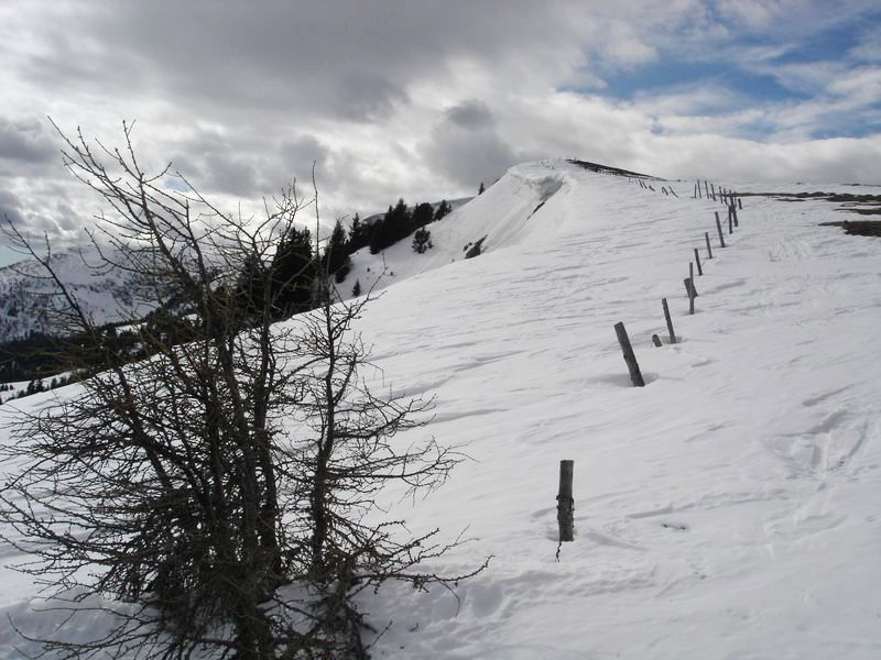 Foto: wickie / Ski Tour / Frauenalpe (1997m) / 24.02.2008 12:44:55