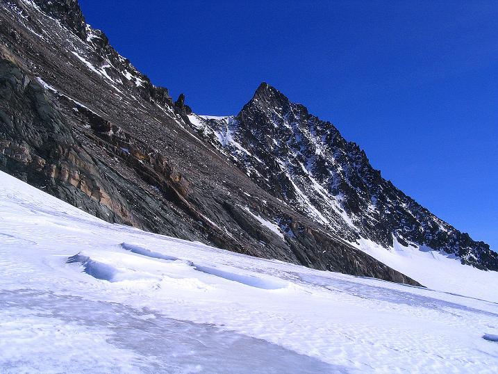 Foto: Andreas Koller / Ski Tour / Im Banne des Großglockners auf den Teufelskamp (3511m) / Der Großglockner vom Teischnitzkees / 26.02.2008 21:23:49