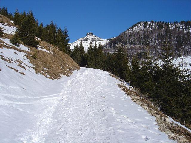 Foto: Manfred Karl / Ski Tour / Über den Tennerwinkel auf den Schmittenstein / Zielgerichteter Aufstieg / 29.02.2008 16:40:43