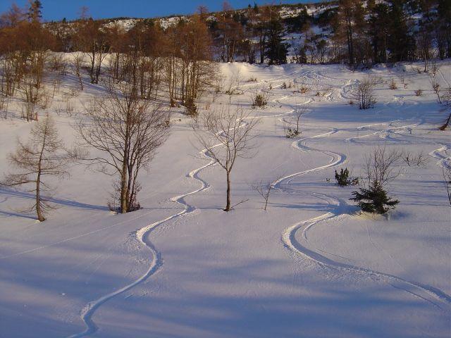 Foto: Manfred Karl / Ski Tour / Über den Tennerwinkel auf den Schmittenstein / Auch bei sicherem Pulverschnee sehr schöne Tour. / 29.02.2008 16:36:46