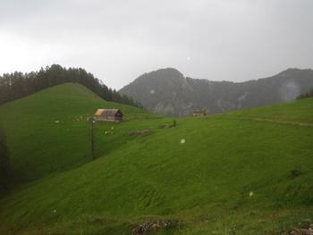 Foto: gkothi / Mountainbike Tour / Größtenberg-Alpstein-Predigtstuhl Umrundung / blabergalm / 29.02.2008 20:23:06