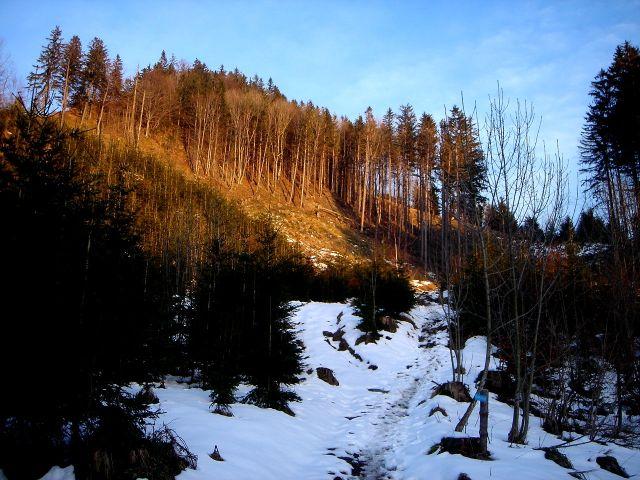 Foto: Manfred Karl / Wander Tour / Ein Berg für alle Jahreszeiten / Steinwandl / 15.03.2008 15:39:15
