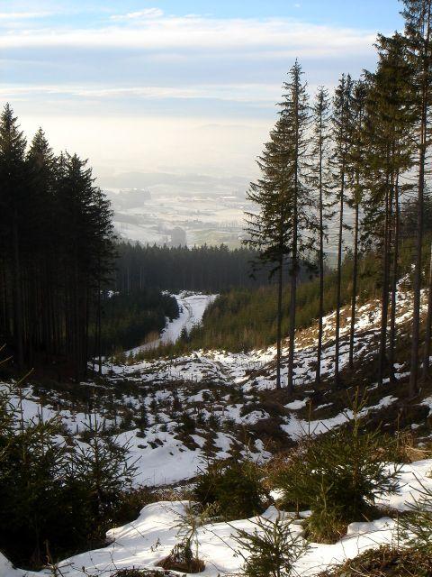 Foto: Manfred Karl / Wander Tour / Ein Berg für alle Jahreszeiten / Der Abstiegsweg durch die Mulde / 15.03.2008 15:30:09