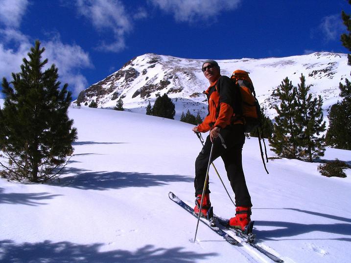 Foto: Andreas Koller / Ski Tour / Von der Turrach auf das Gregerlnock (2296m) / Im lichten Wald unterhalb der Pregathütte / 16.03.2008 16:38:26