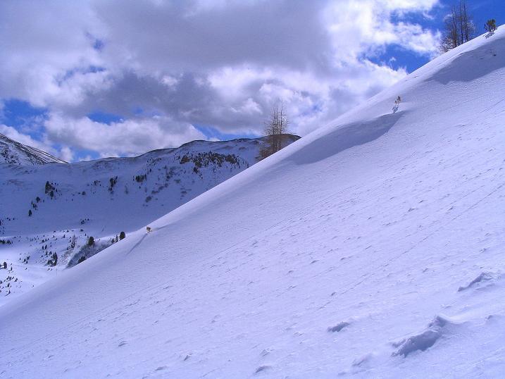 Foto: Andreas Koller / Ski Tour / Von der Turrach auf das Gregerlnock (2296m) / Aufstieg in der O-Flanke / 16.03.2008 16:35:27