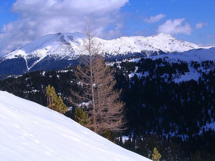 Foto: Andreas Koller / Ski Tour / Von der Turrach auf das Gregerlnock (2296m) / Blick nach O zum Eisenhut (2441 m) / 16.03.2008 16:35:12