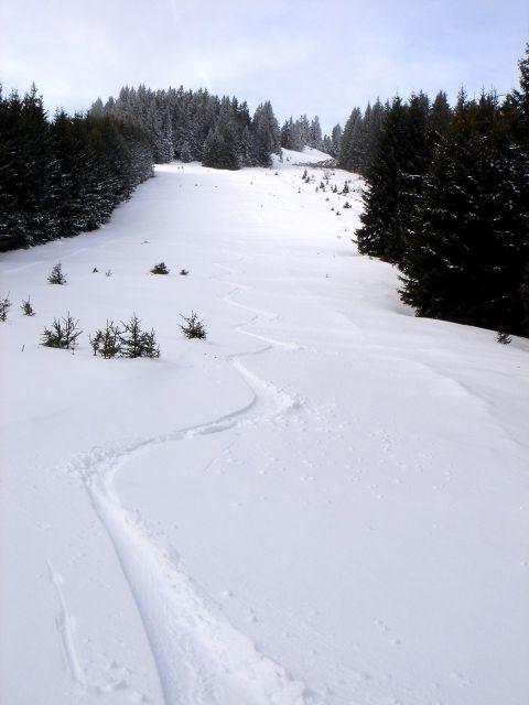 Foto: Manfred Karl / Ski Tour / Ofnerkogel, 1666m / Platz genug für mehrmaliges Auf und Ab / 19.03.2008 23:07:22