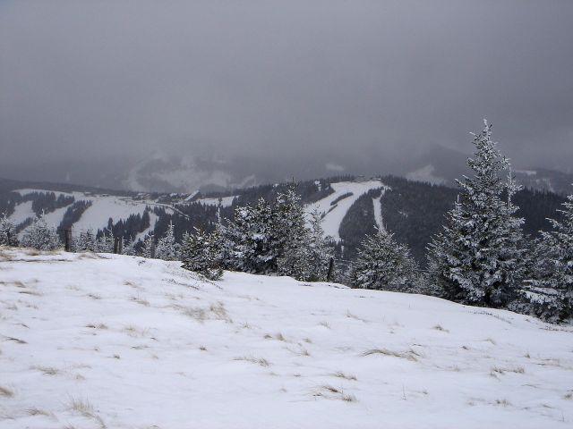 Foto: Manfred Karl / Ski Tour / Ofnerkogel, 1666m / Am Wiesenrücken zum Gipfel / 19.03.2008 23:05:59