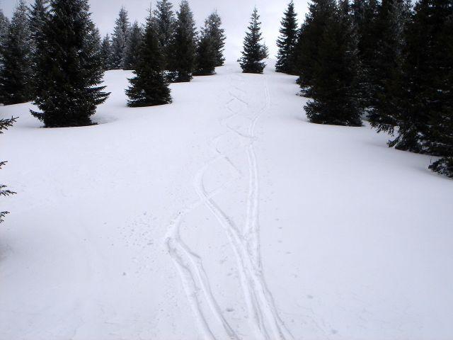 Foto: Manfred Karl / Ski Tour / Ofnerkogel, 1666m / Der flache Gipfelhang / 19.03.2008 23:05:14