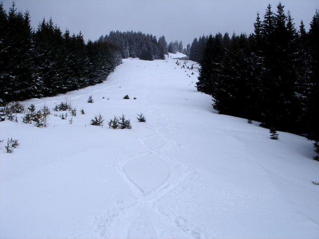 Foto: Manfred Karl / Ski Tour / Ofnerkogel, 1666m / Rückblick auf die alte Piste / 19.03.2008 23:04:39
