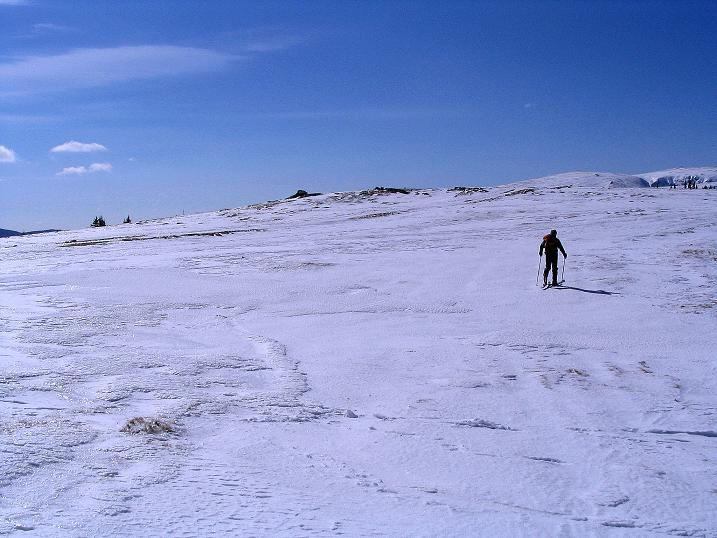 Foto: Andreas Koller / Ski Tour / Tour Goldhaube: Von der Weinebene auf die Koralpe (2140m) / Weite, eher flache Hänge prägen den Anstieg / 20.03.2008 03:20:44