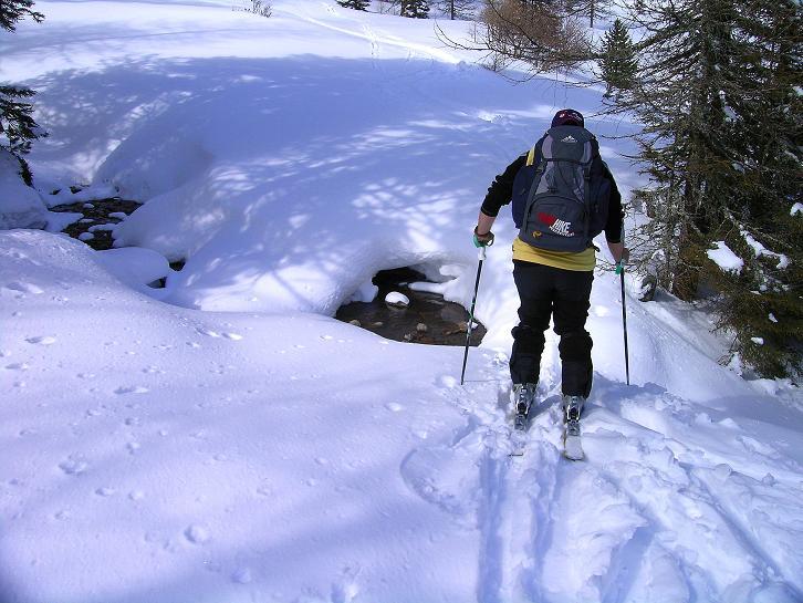 Foto: Andreas Koller / Ski Tour / Über die Zwieflerseen auf den Zinken (2191m) / Waldanstieg / 31.03.2008 18:59:35