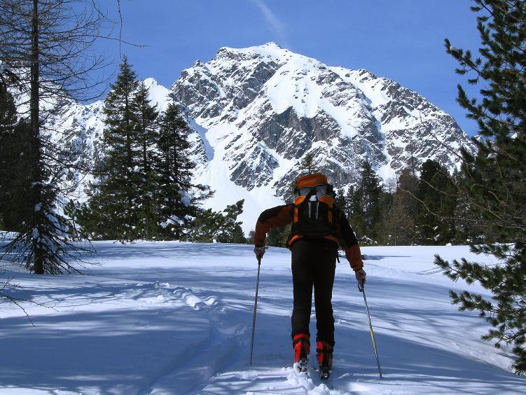 Foto: Andreas Koller / Ski Tour / Über die Zwieflerseen auf den Zinken (2191m) / Der Wald wird lichter und die Landschaft großartiger / 31.03.2008 18:59:03