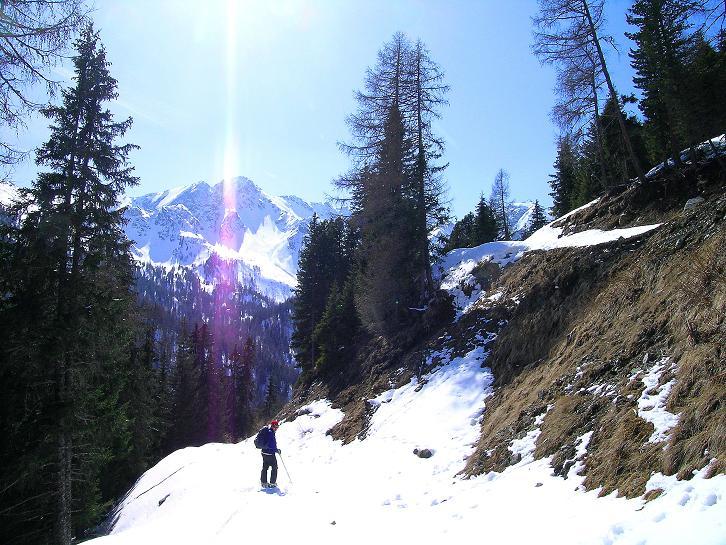 Foto: Andreas Koller / Ski Tour / Über die Zwieflerseen auf den Zinken (2191m) / Abfahrt auf der Forststraße / 31.03.2008 18:37:07