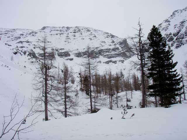Foto: Grasberger Gerhard / Ski Tour / Warscheneck über Zellerschneise / Loigistal / 30.04.2008 12:50:48