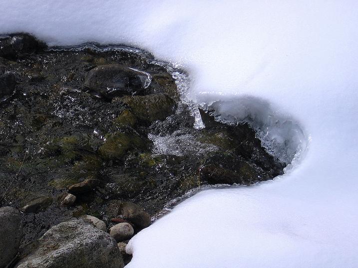 Foto: Andreas Koller / Ski Tour / Vom Bundschuh auf die Schwarzwand (2214 m) / Der Weißbach / 06.04.2008 23:55:18