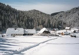 Foto: Wolfgang Dröthandl / Wander Tour / Spazierrunde durch die Walstern bei Mariazell / Fadental im Winter; Quelle: www.mariazell.at / 07.04.2011 14:28:37